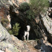 Ruta a la Cueva de los Maragatos. Nacimiento del río Guadalupejo. Guadalupe