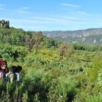 Ruta a los Canchos de la Majailla o Asomadilla. Fósiles, Pinturas y otros Restos en Castañar de Ibor