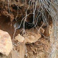 20080511 Ruta a las Minas y Arca del Agua de Guadalupe. Villuercas Ibores Jara. Extremadura