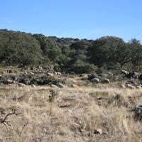 20081220 Ruta Poblado y Necrópolis Romana de Valhondo. Tumbas Visigodas de Miguel Pérez. Berzocana en las Villuercas. Extremadura