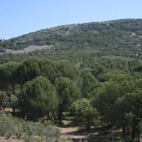 20090507 Ruta del Refugio de Andrés a los Miradores de la Moraleja en la Reserva de Cijara. Siberia de Extremadura. Fuenlabrada de los Montes