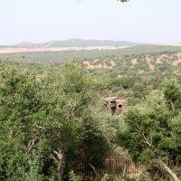 20100708 Centro de Recuperación de Aves Los Hornos de Sierra de Fuentes. Aula de la Naturaleza. Junta de Extremadura