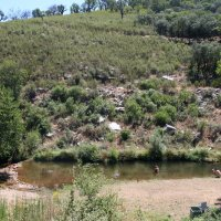 20100727 Ruta a la Piscina Natural de los Robleanos en Castañar de Ibor. Villuercas Ibores Jara. Extremadura