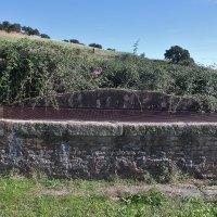 20161108 Fuente de Abajo en Jaraicejo. Parque Nacional de Monfragüe. Extremadura