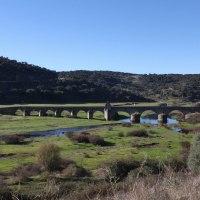 20161116 Ruta por el Puente Medieval del Río Almonte en Jaraicejo. Pueblos del Parque Nacional del Monfragüe. Extremadura.