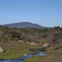 20161231 Ruta por el Río Alcollarín, 2º Tramo,entre Zorita y Herguijuela. Tierras de Trujillo. Extremadura