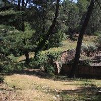 20180616 Ruta de Descargamaría a Cadalso en la Sierra de Gata. Extremadura