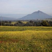 20200226 Ruta por la Carreterina de Abertura a Villamesías. Pueblos de la Tierra de Trujillo. Extremadura